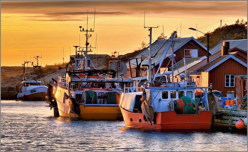 Calendrier Deg Orleans.The Island Paradise Of Hvaler